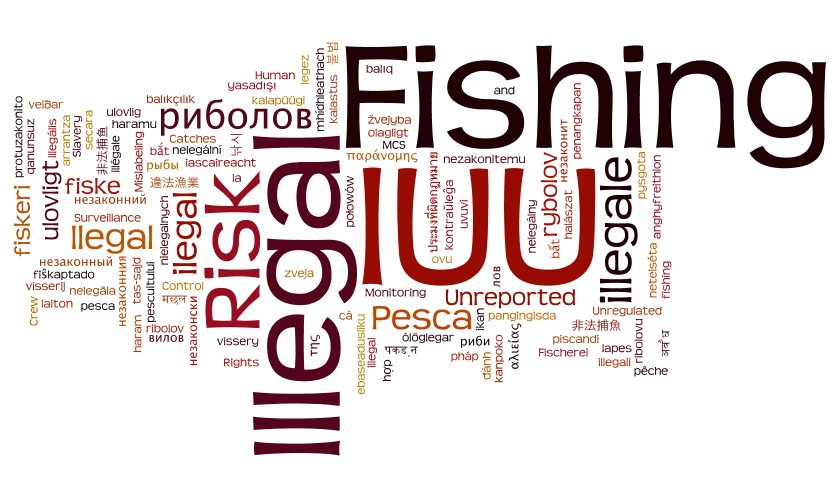 IUU (Illegall Unreported Unregulated Fishing Activities)